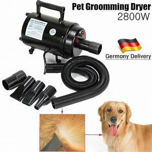 Ship from germany 2800w portable dog cat animal grooming for Dog dryers for sale
