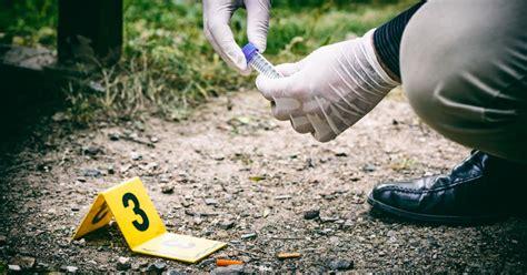 masters  crime scene investigation programs