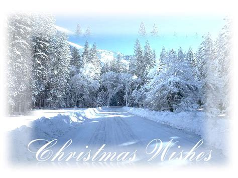 white christmas wallpapers