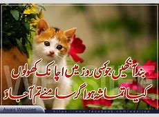 Urdu Poetry Lovers Choice 2 Line Urdu Poetry