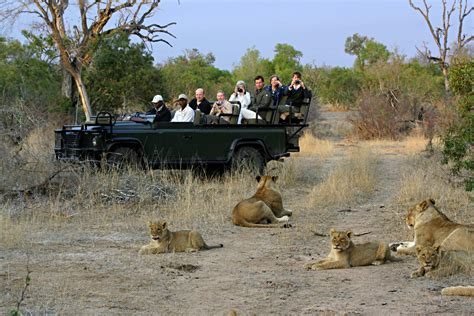 Why Timbavati Game Reserve?  Wild Wings Safaris Blog. Cable Tv Springfield Mo Addicted To Oxycodone. Online Visual Communication Degree. Sole Proprietor Vs Llc Book Printing Seattle. Website For Jewelry Designers. Inspirational Slogans For Business. Umbilical Cord Falls Off Capital Pest Control. Investment Home Loan Rates Set Up A Ftp Site. University Of Wisconsin Eauclaire