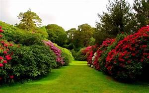 Flower Garden Backgrounds Group (48+)