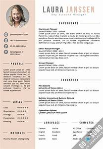 25 best ideas about cv template on pinterest layout cv for Best cv template word