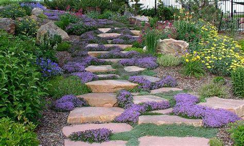 landscape design hillside hillside landscaping designs pictures landscape design