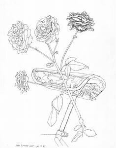 Taro Plant Drawing At Getdrawings