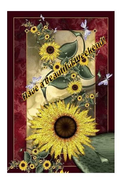 Weekend Sunflower Sunshine Deviantart Glove Velvet Flowers