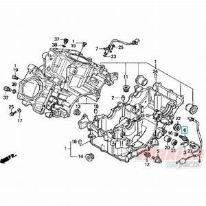 2005 Cbr 600 Rr Wiring Diagram For Display