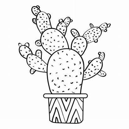 Cactus Pot Silhouette Outline Drawing Multiple Coloring