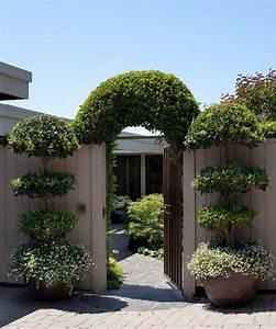 Breathtaking, Vertical, Garden, Design, Ideas
