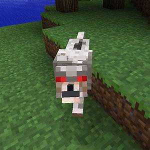 Minecraft Angry Wolf Drawing | www.pixshark.com - Images ...