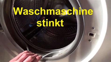 zitronensδure waschmaschine