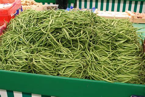 bureau change bordeaux comment surir les haricots verts 28 images haricot