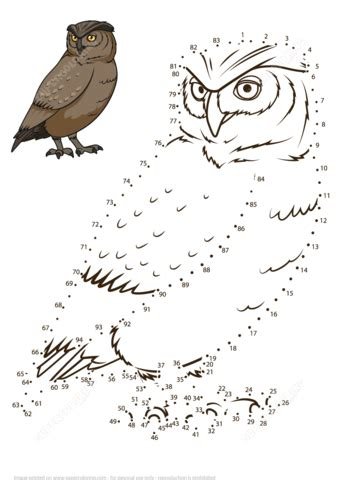 owl dot  dot  printable coloring pages