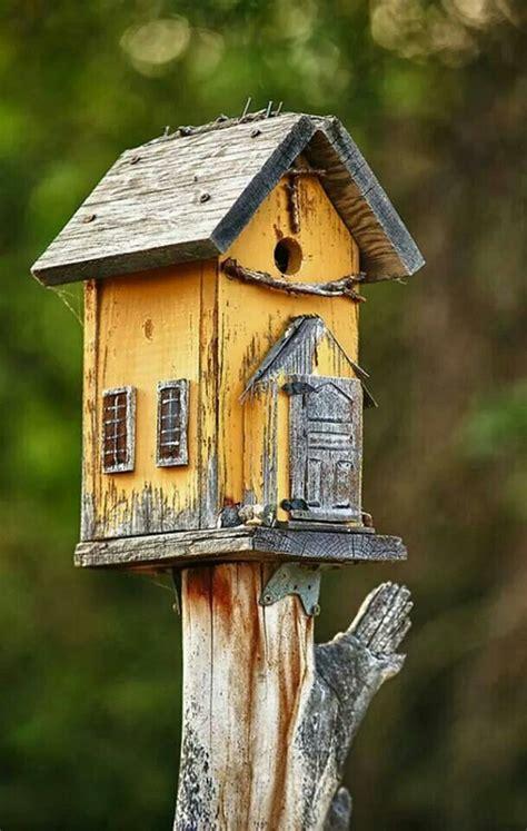 birdhouse bird house bird house feeder