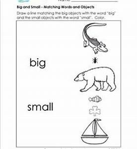 Sorting Worksheets for Kindergarten | A Wellspring of ...