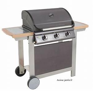 Barbecue Castorama Gaz : barbecue plancha gaz pas cher barbecue gaz plancha ~ Premium-room.com Idées de Décoration
