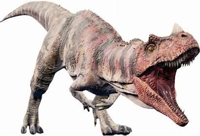 Jurassic Ceratosaurus Evolution Park Jurassicworld Dinosaur Fandom
