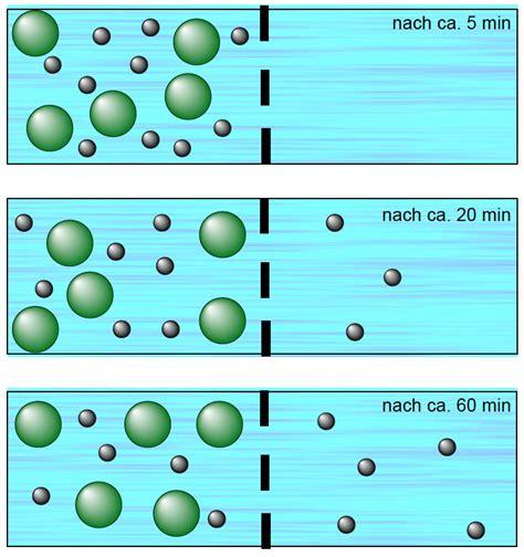 was ist diffusion diffusion durch eine semipermeable membran