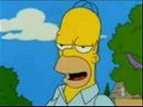 Homer Simpsonuiuaa Youtube