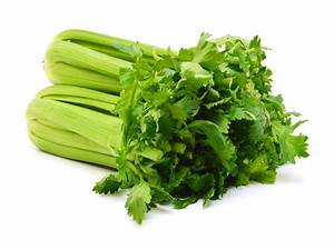 Celeri Branche Culture : c leri vert allegrow ~ Melissatoandfro.com Idées de Décoration