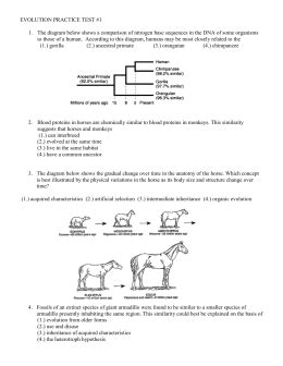 Natural selection, which is darwin's theory of evolution, plays a key role on species survival. studylib.net - Essys, homework help, flashcards, research papers, book report and other