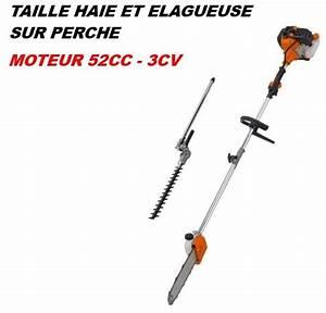 Taille Haie Sur Perche : elagueuse et taille haie perche moteur 52cc 3cv site ~ Dailycaller-alerts.com Idées de Décoration