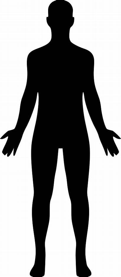 Human Icon Svg Onlinewebfonts