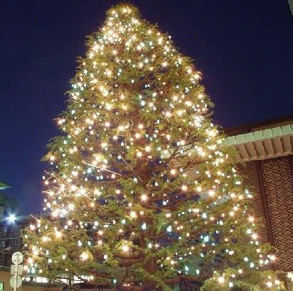 china led christmas tree net lights china led christmas