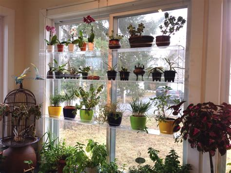 A Closer View Of Joan's Plants. I Really Want To See That
