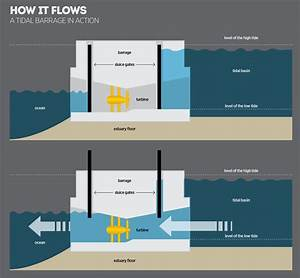 Tidal Bore Energy  How Its Harnessed  U2013 The New Economy