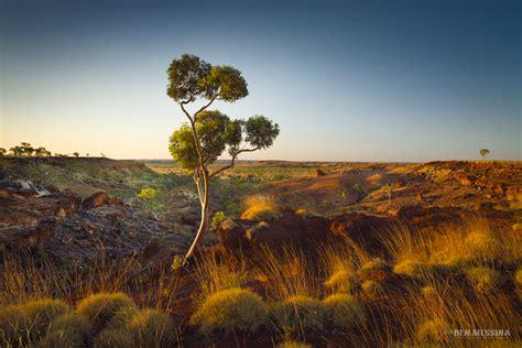 western australia ben messina landscape  nature
