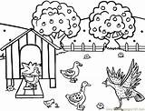 Coloring Farm Pages Printable Farmer Hen Turkey Animals Clipart Feeding Chicken Henhouse Animal Colouring Library Sheets Farmhouse Coloriage Chickens Hens sketch template