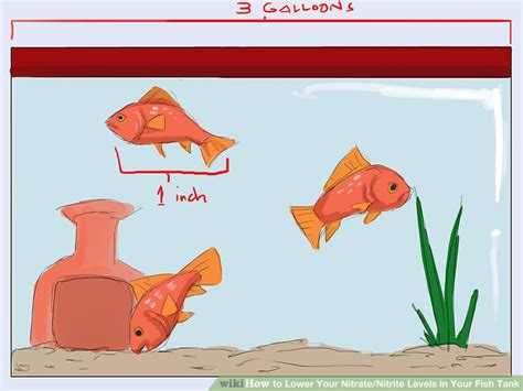 how to lower nitrates how to lower your nitrate nitrite levels in your fish tank