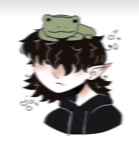 Frog Pfp In 2021 Cute Icons Cartoon Art Styles