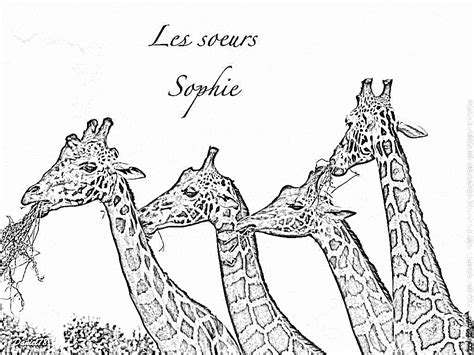 coloriage  dessiner girafe simple