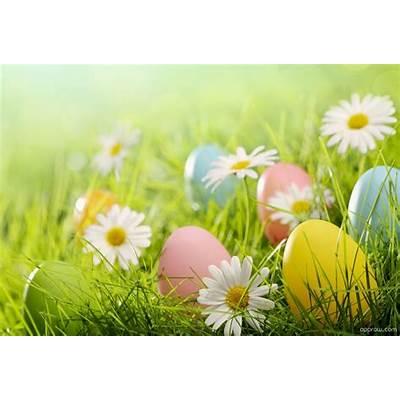 Easter Garden Wallpaper download - HD