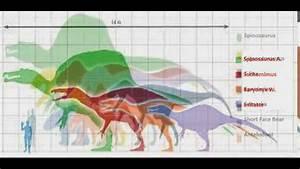 Dinosaur Size Chart Youtube