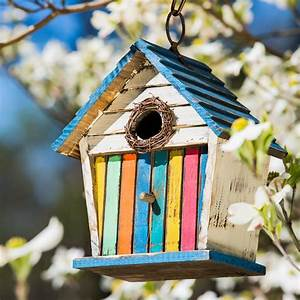 Bird Houses for Any Style or Outdoor Space Evergreen Garden