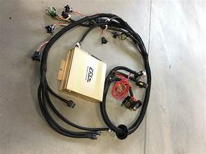 Lsx Standalone Ecu W   Plug  U0026 Play Engine Wiring Harness  U2013 Ms3 Gold Box