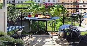 arbustes et plantes pour un balcon fleuri With beautiful quelles plantes pour jardin zen 8 quelles plantes pour un balcon fleuri