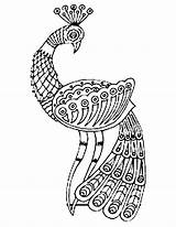 Peacock Drawing Coloring Indian Colour Glamorous Cliparts Clipart Clip Getdrawings Library sketch template
