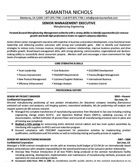 Best Executive Resume Sles by 20 Best Executive Resume Templates Pdf Doc Free