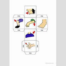 Parts Of The Body Dice Game Worksheet  Free Esl Printable Worksheets Made By Teachers