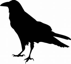 Raven Silhouette Vector Art image - Free stock photo ...