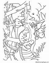 Coloring Water Drinking Animals Pages Printable Getdrawings Getcolorings Wat sketch template