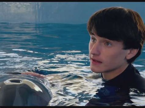 dolphin tale  quotes quotesgram