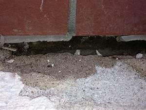 übergang Terrasse Garten : bau de forum balkon und terrasse 12103 bergang terrasse hauswand abdichten nachdem ~ Markanthonyermac.com Haus und Dekorationen
