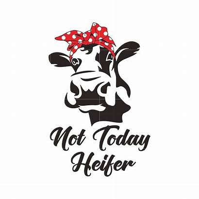 Heifer Svg Today Funny Svgtrending Dxf Eps