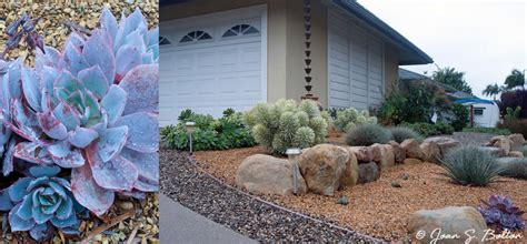 Santa Barbara Garden Design | Portfolio | Rain Garden