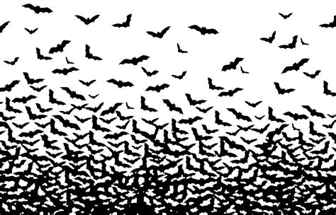 wallpapers blog bat wallpaper
